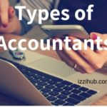 How many types of Accountants in Business
