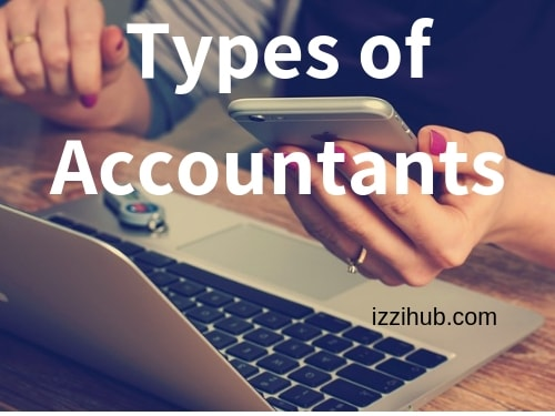 types of accountant