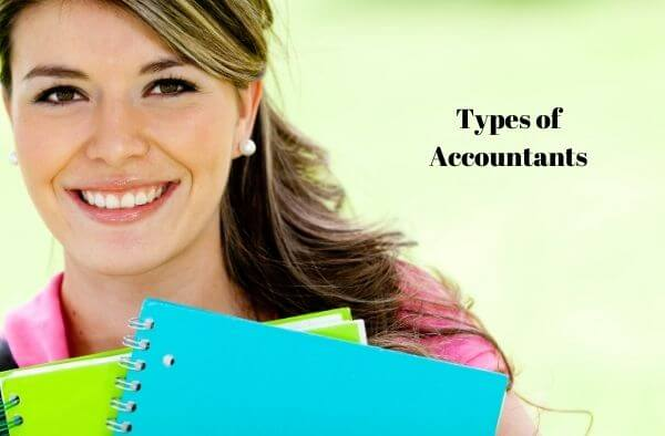What are the types of Accountants