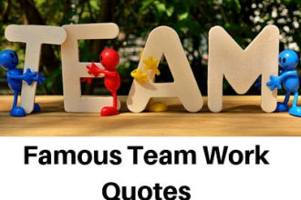 Famous Team Work Quotes